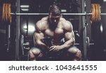 brutal sexy strong bodybuilder... | Shutterstock . vector #1043641555