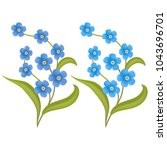 Vector. Flower Forget Me Not I...