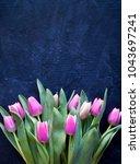 hello may card. spring tulip... | Shutterstock . vector #1043697241