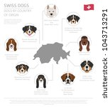 dogs by country of origin.... | Shutterstock .eps vector #1043713291
