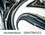 very beautiful monochrome.... | Shutterstock . vector #1043784151