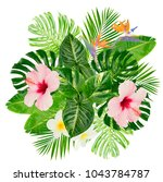 tropical green leaves and... | Shutterstock . vector #1043784787