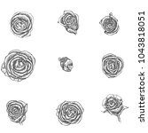 Stock vector flowers set hand drawn rose vector etch style 1043818051