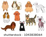 Stock vector group of small dogs hand drawn 1043838064
