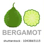 bergamot icon entirely and in a ... | Shutterstock .eps vector #1043865115