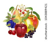 realistic fruit decoration.... | Shutterstock .eps vector #1043889421