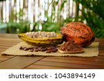 raw cocoa pods  cacao beans and ... | Shutterstock . vector #1043894149