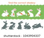 find the correct shadow of... | Shutterstock .eps vector #1043904337