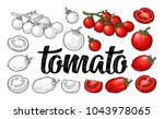 set of hand drawn tomatoes and... | Shutterstock .eps vector #1043978065