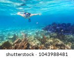 young woman snorkeling in the... | Shutterstock . vector #1043988481