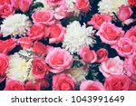 fresh beautiful red and pink... | Shutterstock . vector #1043991649
