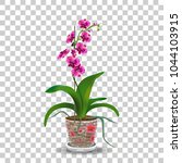 phalaenopsis orchid in pot ... | Shutterstock .eps vector #1044103915