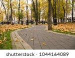 autumn leaves on the pedestrian ...   Shutterstock . vector #1044164089