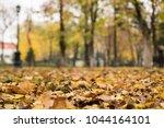 autumn leaves on the pedestrian ...   Shutterstock . vector #1044164101