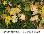 background group autumn orange...   Shutterstock . vector #1044164125