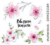 blossom flowers isolated vector ... | Shutterstock .eps vector #1044231184