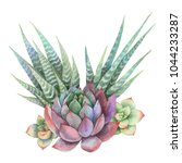 watercolor bouquet of cacti and ... | Shutterstock . vector #1044233287