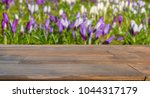 wooden table with  blooming ... | Shutterstock . vector #1044317179