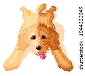 goldendoodle or labradoodle dog ... | Shutterstock .eps vector #1044333049