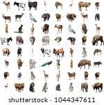 Huge Wild Animals Collage - Fine Art prints