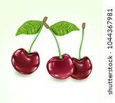 vector realistic cherries | Shutterstock .eps vector #1044367981
