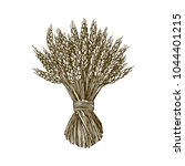 sheaf of wheat. engraving style.... | Shutterstock .eps vector #1044401215
