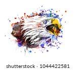 Vector Color Illustration Of A...