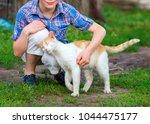 Ginger Cat Tenderly Rubs...