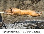 swine on a spit | Shutterstock . vector #1044485281