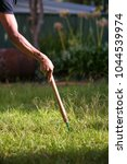 gardening removing weed at the... | Shutterstock . vector #1044539974