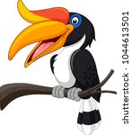 cartoon hornbill  bird isolated ... | Shutterstock .eps vector #1044613501