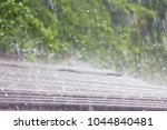 Summer Rain With Hail Falls On...