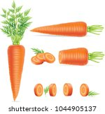 carrots with leaves and slices. ... | Shutterstock .eps vector #1044905137