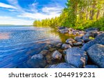 Forest river shore landscape