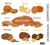 set of colored nuts | Shutterstock .eps vector #1044947341