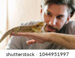 Man Holding Bearded Agama In...