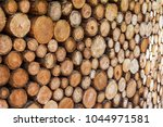 tree trunks cut and stacked | Shutterstock . vector #1044971581