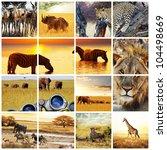 african safari in etosha namibia | Shutterstock . vector #104498669