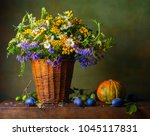 still life with wild flowers in ... | Shutterstock . vector #1045117831