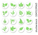 green leafs plant icons symbols ... | Shutterstock . vector #1045139065