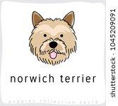 norwich terrier   dog breed... | Shutterstock .eps vector #1045209091