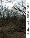 warped hill with trees dark... | Shutterstock . vector #1045213891