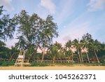Beautiful Tropical Landscape....