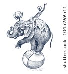 circus elephant. african wild... | Shutterstock .eps vector #1045269511