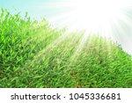 beautiful seashore vacation on... | Shutterstock . vector #1045336681