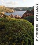 green bushes on malta island in ...   Shutterstock . vector #1045362331
