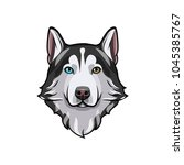 husky dog portrait. husky head. ... | Shutterstock .eps vector #1045385767