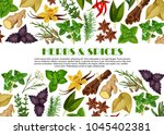 herbs and spices poster... | Shutterstock .eps vector #1045402381
