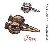 poppy pod with seeds seasoning...   Shutterstock .eps vector #1045445719