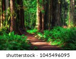 path through the forest ... | Shutterstock . vector #1045496095